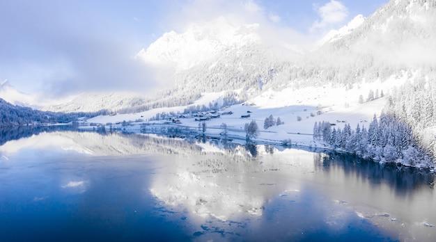 Красивые деревья в зимнем пейзаже ранним утром в снегопаде