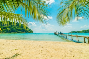 Beautiful tropical beach and sea with coconut palm tree in paradise island