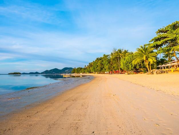 코코넛 야자수와 아름 다운 열 대 해변과 바다