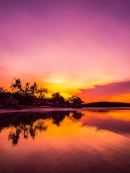 美しい熱帯のビーチの海と日の出時にココヤシの木と海