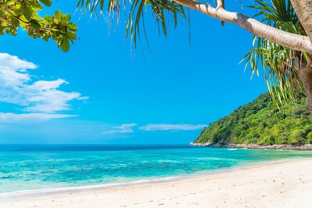 Красивый тропический пляж морской океан с кокосом и другим деревом вокруг белого облака на голубом небе