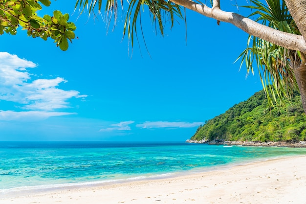 Beautiful tropical beach sea ocean with coconut and other tree around white cloud on blue sky