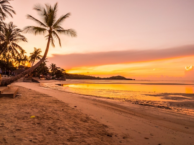Beautiful tropical beach sea and ocean with coconut palm tree at sunrise time