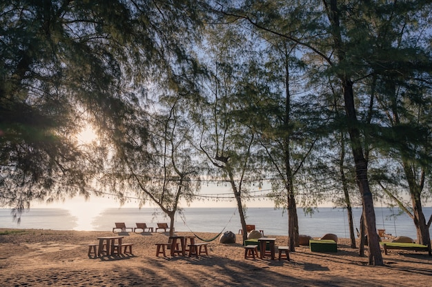 Beautiful tropical beach with sunlight shining through trees in the evening. vacation and summer concept
