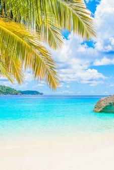 아름다운 열대 해변