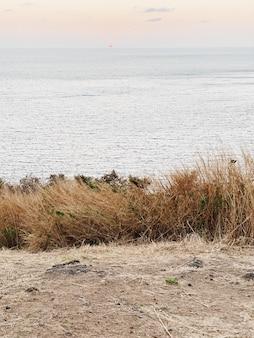 푸켓의 하얀 모래, 푸른 바다, 긴 잔디와 부드러운 일몰과 함께 아름다운 열대 해안보기