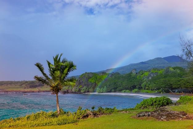ハワイ、マウイ島の美しい熱帯の風景