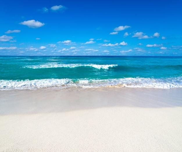 자연 휴가 휴가 배경 개념에 대 한 해변, 바다, 푸른 하늘과 아름 다운 열 대 몰디브 섬