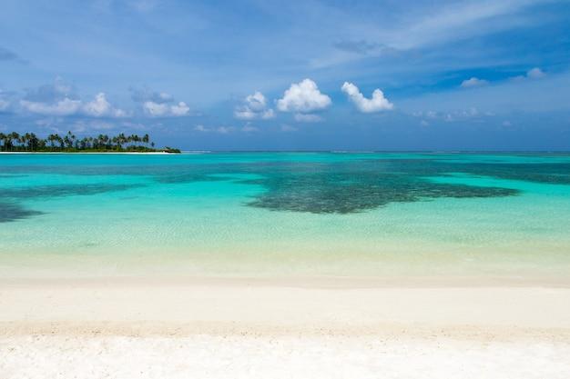 해변이있는 아름다운 열대 몰디브 섬