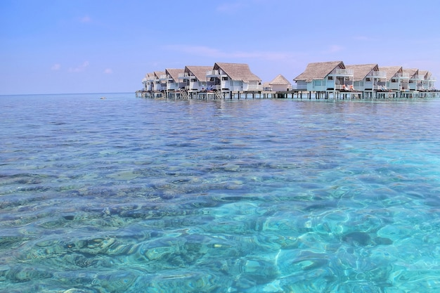 Beautiful tropical maldives island with water villa and coral in crystal sea.