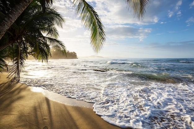 コスタリカの美しい熱帯太平洋沿岸