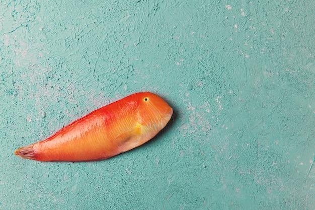Красивые тропические рыбы красного моря жемчужная бритва на фоне цвета бирюзы или тиффани. xyrichtys novacula. рыбная композиция