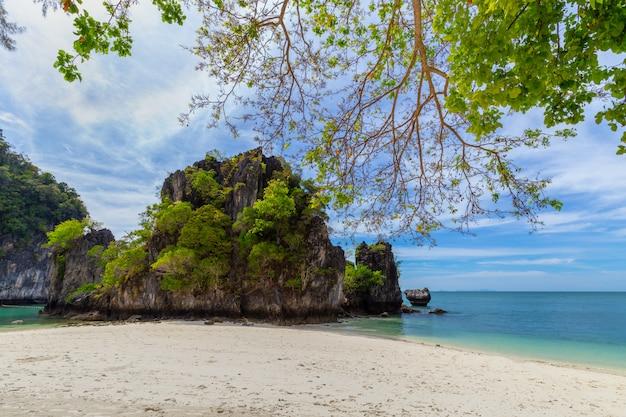 Beautiful tropical sandy beach and lush green foliage on a tropical island