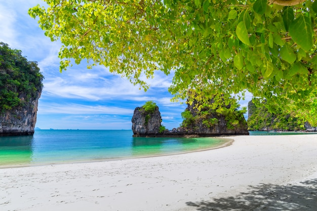 Beautiful tropical sandy beach and lush green foliage on a tropical island
