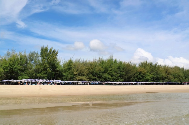 Beautiful tropical sea beach with bed beach and umbrella with pine trees in the summer morning.