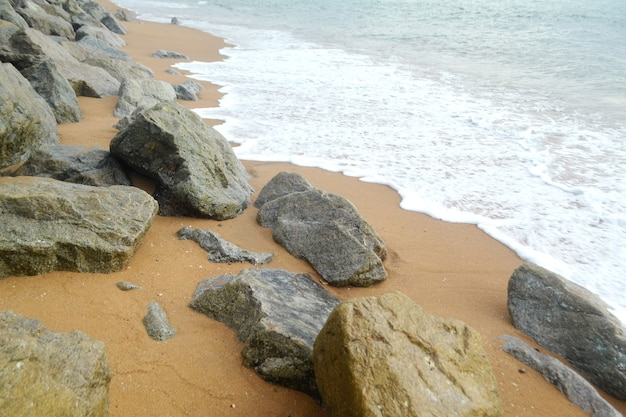 Beautiful tropical stone beach landscape