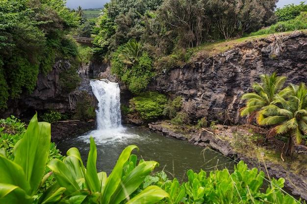 ハワイの美しい熱帯の滝