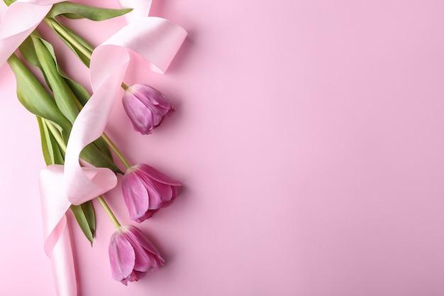 色の背景に美しいチューリップの花