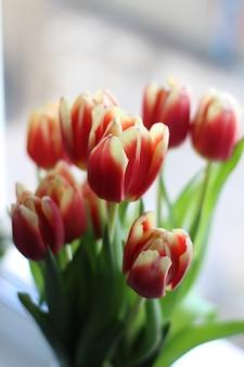 봄에는 꽃병에 아름다운 튤립이 있습니다.