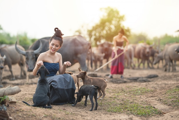 Beautiful two asian women dressed in traditional costume with buffalo at farmland,one sit on ground floor play with dogs and one use spade dig ground .
