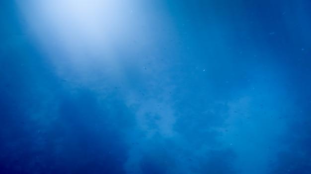 紅海の底にあるカラフルな熱帯のサンゴ礁の美しい水中画像