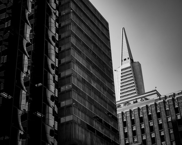 黒と白で撮影した美しい都市建築
