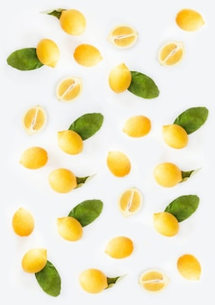 Beautiful vertical illustration of lemons with white background