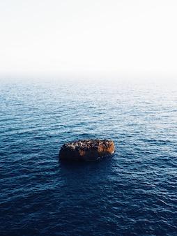 驚くべき水のテクスチャと海の真ん中にある茶色の岩の美しい垂直ショット