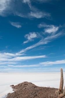 볼리비아 이슬라 잉카우아시(isla incahuasi)에 있는 염전의 아름다운 수직 샷