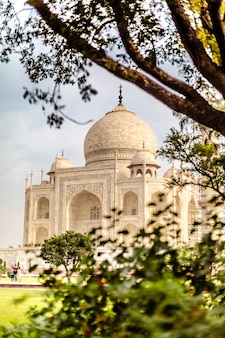 Beautiful vertical shot of taj mahal building in agra india with trees nearby