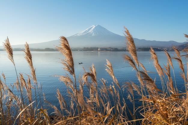 Beautiful view around lake kawaguchi with mount fuji in background