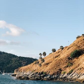 Прекрасный вид на экзотическую скалу с одинокими пальмами, синее море и чистое небо.