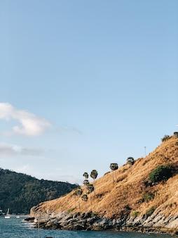 외로운 야자수, 푸른 바다와 맑은 하늘이있는 이국적인 바위의 아름다운 전망