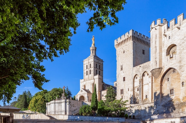 Beautiful view of avignon cathedral (cathedral of our lady of doms) and palace of the popes in avignon, france