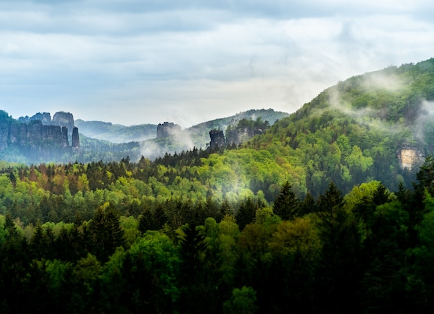Bella vista del paesaggio della svizzera boema in repubblica ceca con alberi