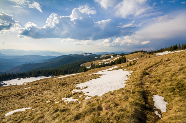 Beautiful view of carpathian mountains in early spring. hill with dry grass and spots on snow and fantastic panorama of distant foggy mountains range covered with forest under bright blue cloudy sky.