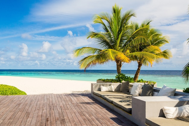 Beautiful view of couches next to a palm tree near the beach on a sunny summer day