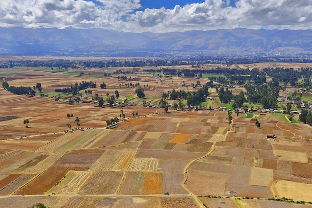 Beautiful view of crops in the district of ahuac