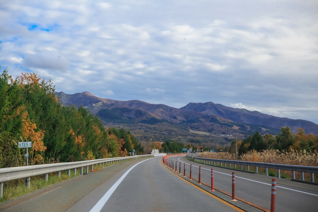 Beautiful view, the fall season and street in the autumn hokkaido japan.
