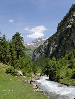 Beautiful view of a flowing river surrounded by trees and mountains under a cloudy blue sky