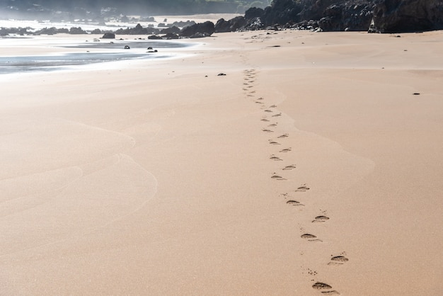 Beautiful view of the footsteps on the beach sand near the shore with rocks in the background