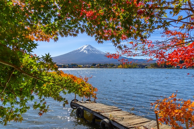 Beautiful view of fuji san mountain with colorful red maple leaves and winter morning fog in autumn season