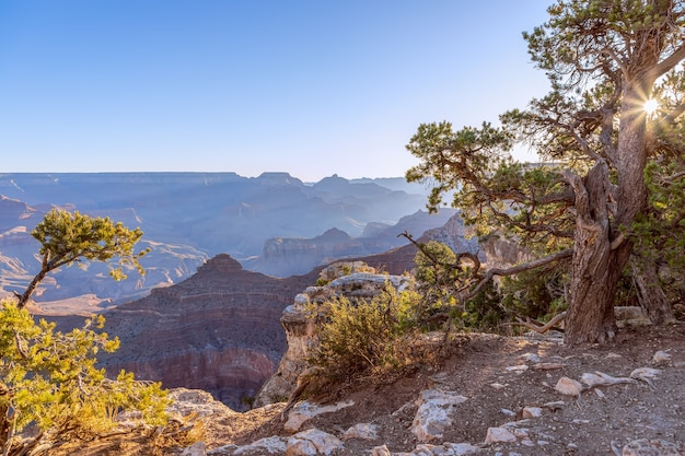Beautiful view of the grand canyon at dawn