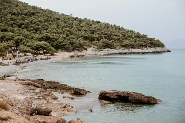 Bella vista su un pendio ricoperto di verde e una spiaggia tropicale