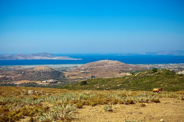 コス島の丘と海の美しい景色