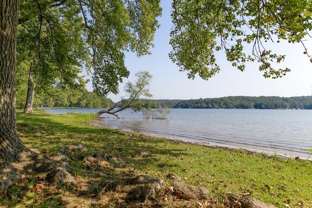 Bella vista di un lago in arkansas, usa