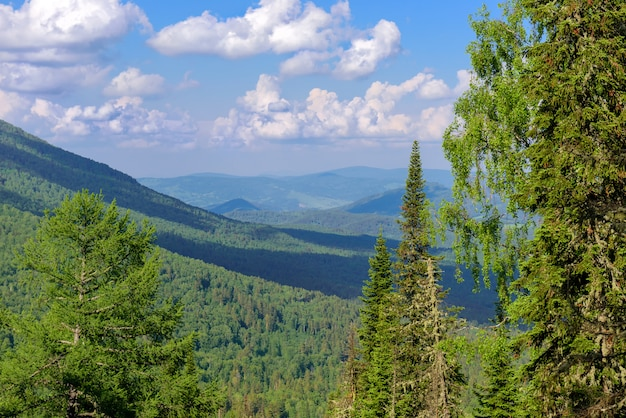 Beautiful view of mountains covered with green coniferous forest against a blue sky with white clouds on sunny summer day. desolate corners of our planet. ecological areas of the earth.