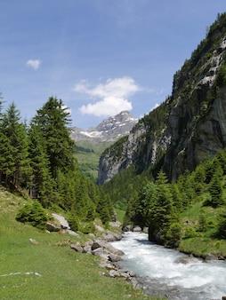 Прекрасный вид на текущую реку в окружении деревьев и гор под пасмурным голубым небом.