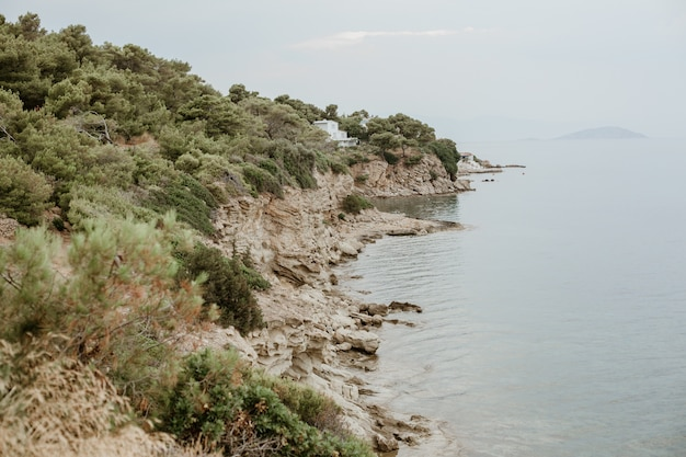 물 근처에 녹색으로 덮인 바위 사면의 아름다운 전망