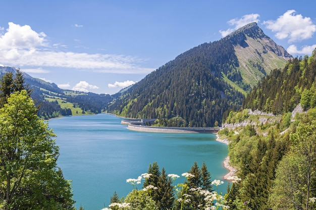 Прекрасный вид на озеро в окружении гор в озере лонгрин и плотине в швейцарии